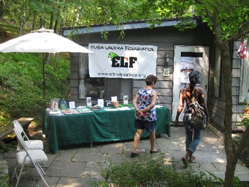 The ELF Book Fair Set-up in collaboration with Usborne Books & More, in Goldens Bridge, NY.